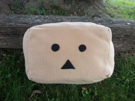 Danbo Pillow Cube by GreenSleazy
