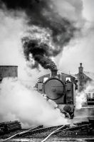 Chasewater Steam 3 by Grunvald