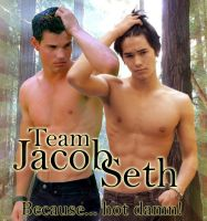 Team Jacob Seth because... by Rogue-Ranger
