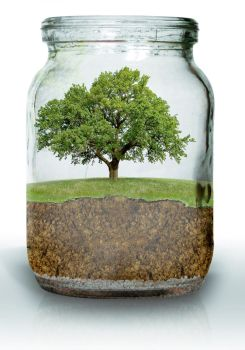 Life in a jar by TheStro
