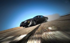 Sideways Action in Firebird by RaynePhotography