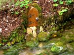 do faires live here 2 by Estruda