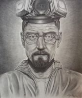 WalterWhite BreakingBad by LizaMo