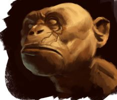 Monkey speed painting by duduOmag