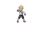 Custom Trainer Sprite by Blaziken601