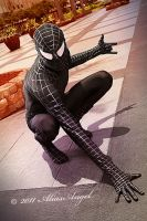 Spiderman in Black by aliasangel2005