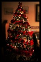 My Christmas Tree -2011 by marty-mclfy