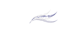 Lstrike Photohraphy by The-Average-Alex