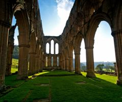 Rievaulx Abbey Ruins by davepphotographer
