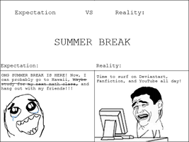 Expectation Vs Reality: Summer Break by NinjaFalcon90