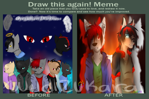 Before and After Meme by WildRukarai