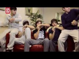 1D Challenge: Day 25-fav 1D video diary by Toadettesupahfan18
