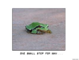 A Small Step For Man 01 by hellsmurf