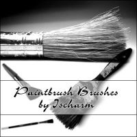 Ischarm Paintbrush Brushes by ischarm