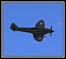 Supermarine Seafire by lizzyr