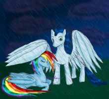 Soarin and Rainbow Dash in the Rain by Gondaro