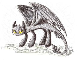 Toothless Sketch by Cloudghost