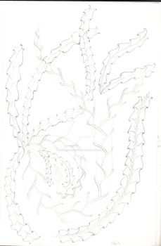 Zentangle Sketch 1 by Dragonshadow3