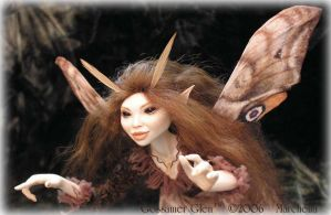 'Magic' Faerie - Close view by GossamerGlen