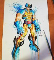 Wolverine Blue and Gold Saucy by RobDuenas