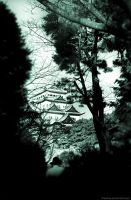Japan in and out of focus 17 by TheQine