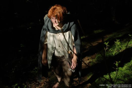 LotR-cosplay: Samwise the Brave by Kumagorochan