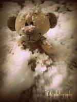 Little Pimboli's playing in the snow. by ASFmaggot
