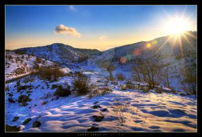 Snowy Paradise by Gil-Levy
