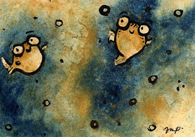 aceo for woodswallow by kailavmp