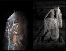 The lost bride by photoport