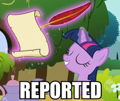 Crystal Pony Written Report by ZoruaAWESOME