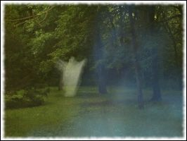 Ghostly Woods Border Version by webgoddess