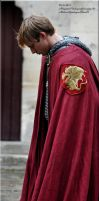 Pierrefonds Sept. 2012 - Arthur Pendragon 8 by MorgainePendragon