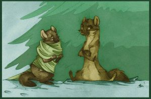 Yarcold and Fircone. by FortunataFox