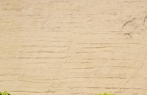 Wall Texture - 52 by AGF81