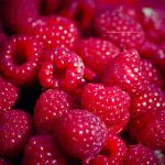 Bloodberries by emilianna12