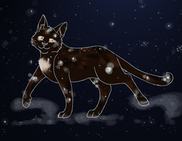 Walk With StarClan by Warriors-horse