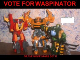 VOTE FOR WASPINATOR by pokemon-eversole