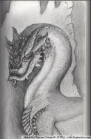 Smaug - Sketch of the day by RaptorArts