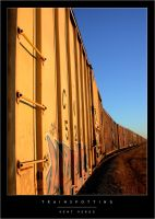 Trainspotting by wulfster