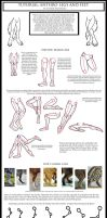Anthro Leg-Paw Tutorial by LuthienNightwolf