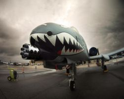 A-10 by GordonTarpley