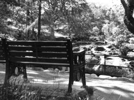 Swallow falls bench by Heylormammy