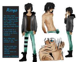 Winter 2012 Ringo Human Ref Sheet by YokoRingo