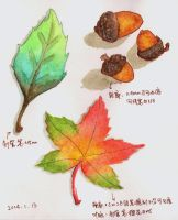Water color practice by Ovilia1024
