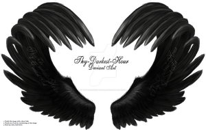 Airbrushed Wings 02 by Thy-Darkest-Hour