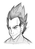 Vegeta - Prince of All Saiyans by taves