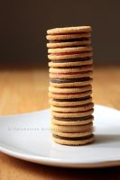 Neapolitan Oreo Tower by claremanson