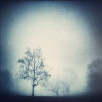 Barely Remembering by intao
