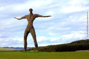The Wickerman 2012 by printsILike